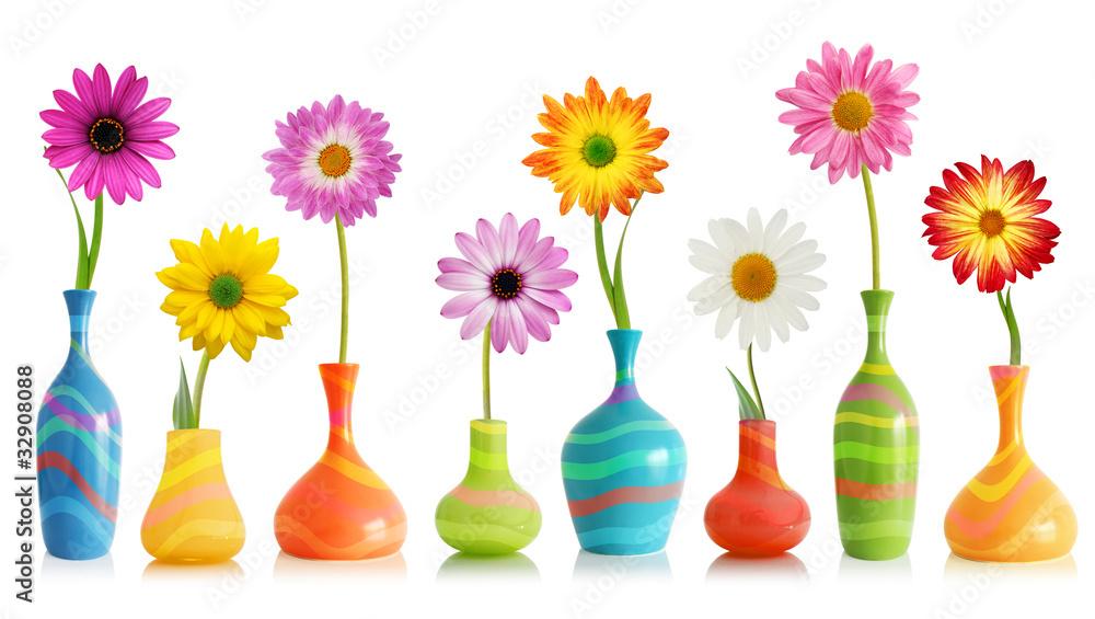Fototapeta Daisy flowers in vases