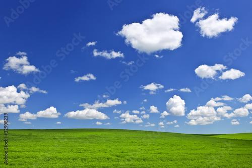 Green rolling hills under blue sky Fototapeta