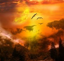 Paysage Fantastique Oiseaux