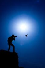 Photographer Make A Shot Of A Hummingbird