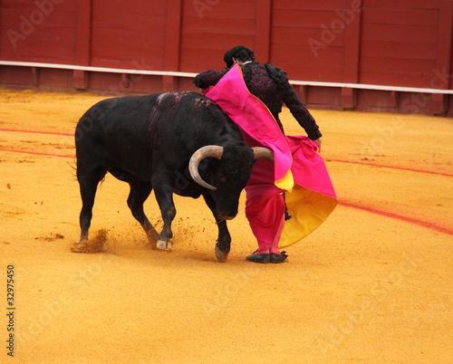 Poster Stierenvechten Corrida