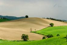 Paesaggio Di Colline E Campi A...