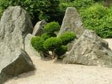 Fototapeta Kamienie - Ogród japoński