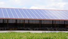 Ferme Solaire, Centrale Solaire, Agriculture Durable, élevage