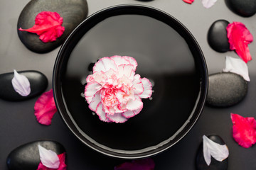 Obraz na płótnie Canvas White and pink carnation floating in a black bowl surrounded by