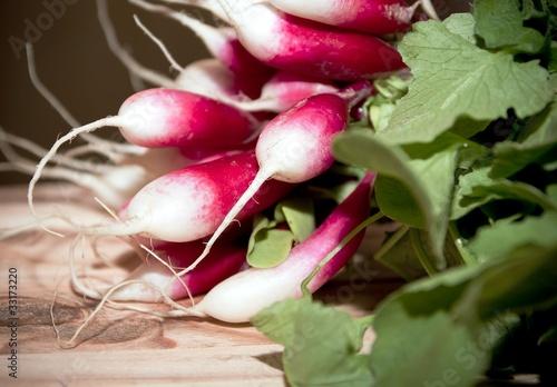 Fototapety, obrazy: Raphanus sativus