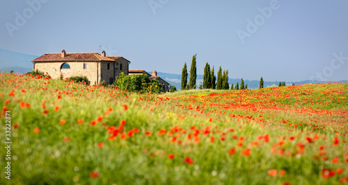 Photo Stands Tuscany rotes Italien