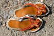 children summer shoes on the beach