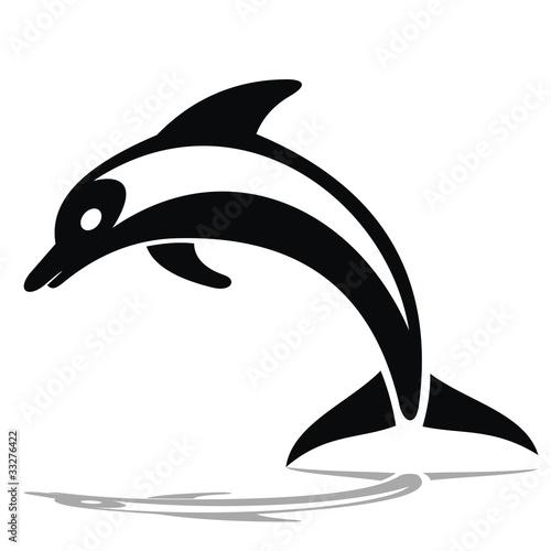 Foto op Plexiglas Dolfijnen Delfines_2