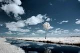 Fototapeta Krajobraz - 12 LANDSCAPE INFRARED PEJZAŻ PODCZERWIEŃ