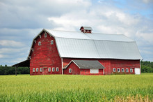 Old Red Wooden Barn On The Farm