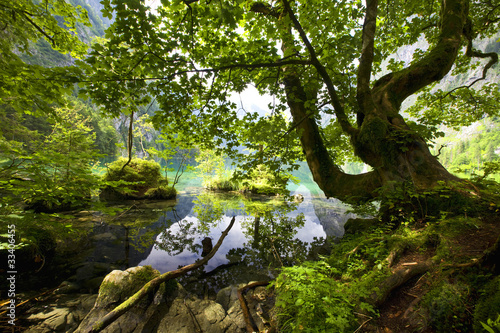 Foto-Kissen - spring in mountain