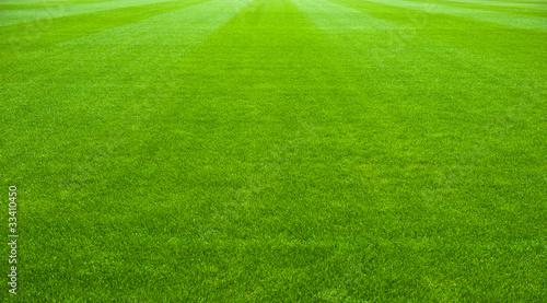 Fotografía soccer field