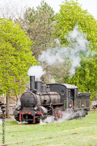 Fototapeta steam locomotive (126.014), Resavica, Serbia obraz na płótnie