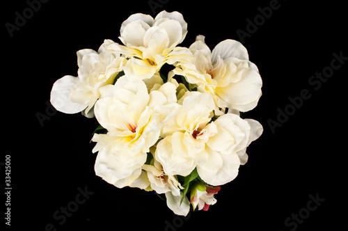 Fotografie, Obraz  Kwiaty