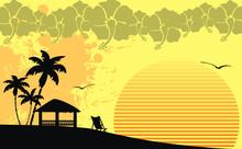Hawaiian Tropical Beach Background8