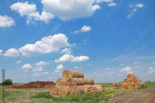 Staande foto Bleke violet Rural area