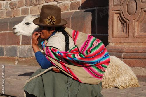 Staande foto Lama Descendante inca