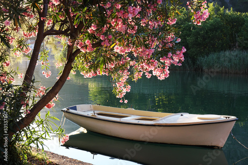 Fototapety, obrazy: Boat on the river