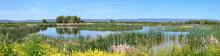 National Wildlife Refuge & Marshes, Klamath Falls Oregon.