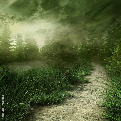 lesna-sciezka-nad-rzeka