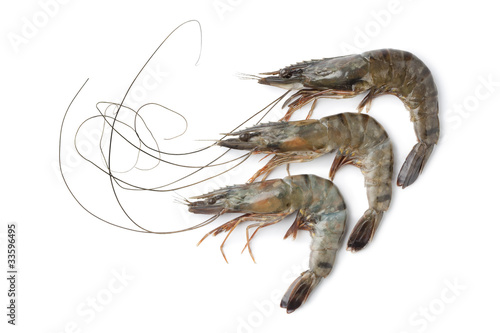 Poster Coquillage Whole fresh black tiger shrimps