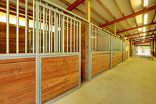 Large Arena With Horse Stables