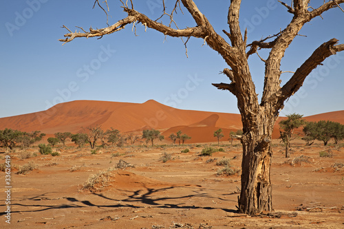 Namib-Naukluft-Nationalpark - 33626419