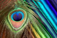 Farben Aus Der Natur