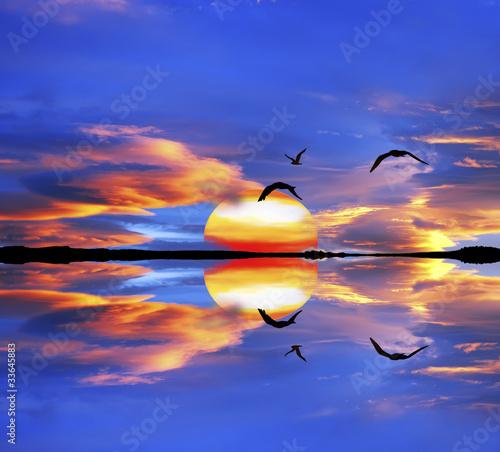 Acrylic Prints las aves se miran al espejo
