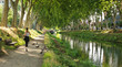 canvas print picture - le canal du Midi à Toulouse