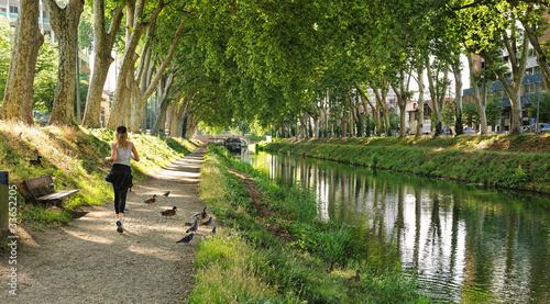 Canvas-taulu le canal du Midi à Toulouse