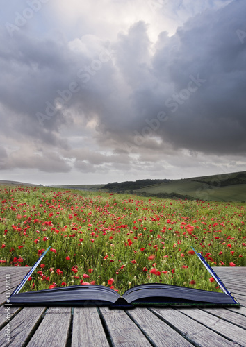 Keuken foto achterwand Khaki Creative concept image of poppy field landscape coming out of pa