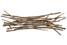 Sticks And Twigs Isolated
