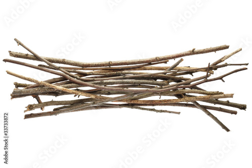 Sticks and twigs isolated Fototapeta