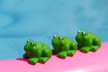 Toy Frog On An Inflatable Pool