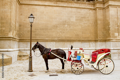 Fotobehang Indiërs Carriage with horse in Majorca cathedral in Palma