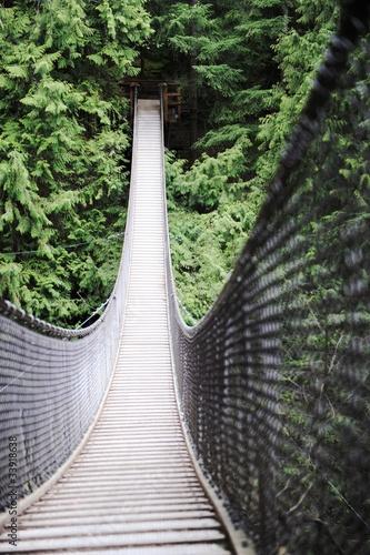 Canvas Prints Bridge lynn canyon bridge