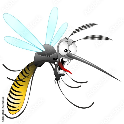 Aluminium Prints Draw Zanzara Tigre Cartoon-Funny Mosquito-Moustique-Vector