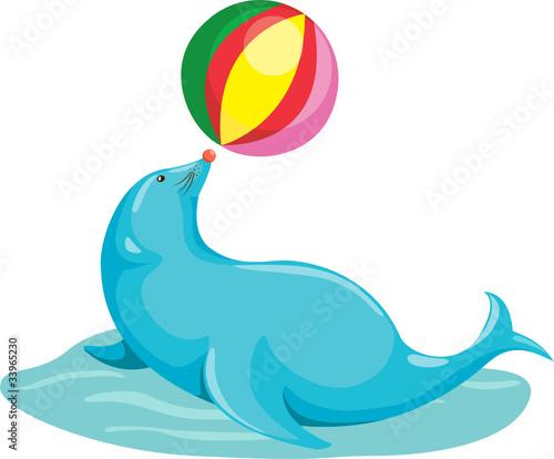Staande foto Dolfijnen Seal