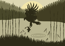 Osprey Hunting In Wild Nature Foliage Illustration