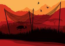 Heron Under Fishing Net In Wild African Nature