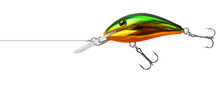 Fishing Lure Wobbler Isolated
