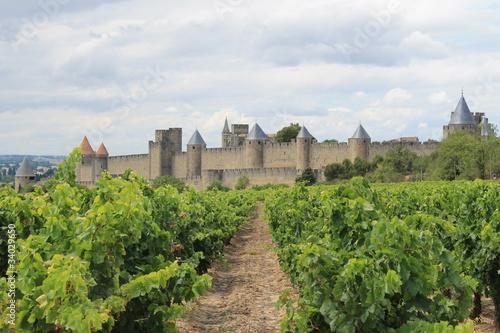 Photo Le vin de la cité