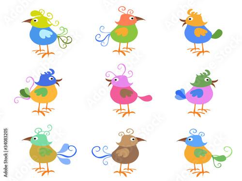 Poster Vogels, bijen colorful cartoon birds