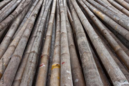 Fototapety na sufit   bambus-uzywany-w-budownictwie