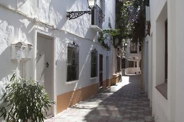 Mediterranean alley in Marbella, Spain
