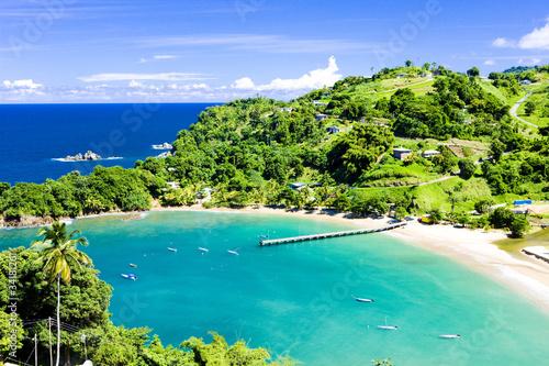 Photo sur Toile Caraibes Parlatuvier Bay, Tobago