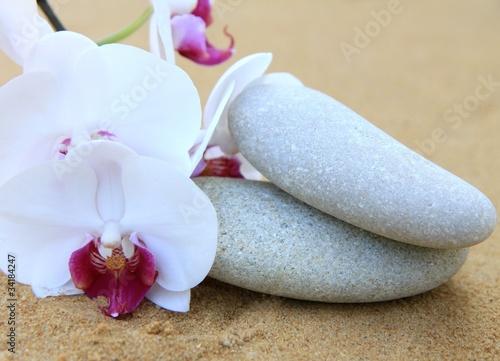 Photo sur Plexiglas Zen pierres a sable galets et fleur d'orchidée