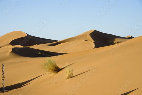 Poster Maroc Dune Di Chegaga